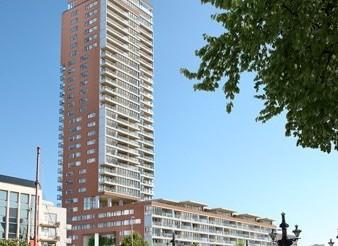 100 Hoog – Rotterdam